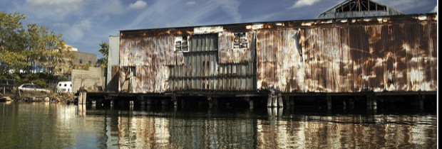 The Gowanus Canal's Beacon of Hope